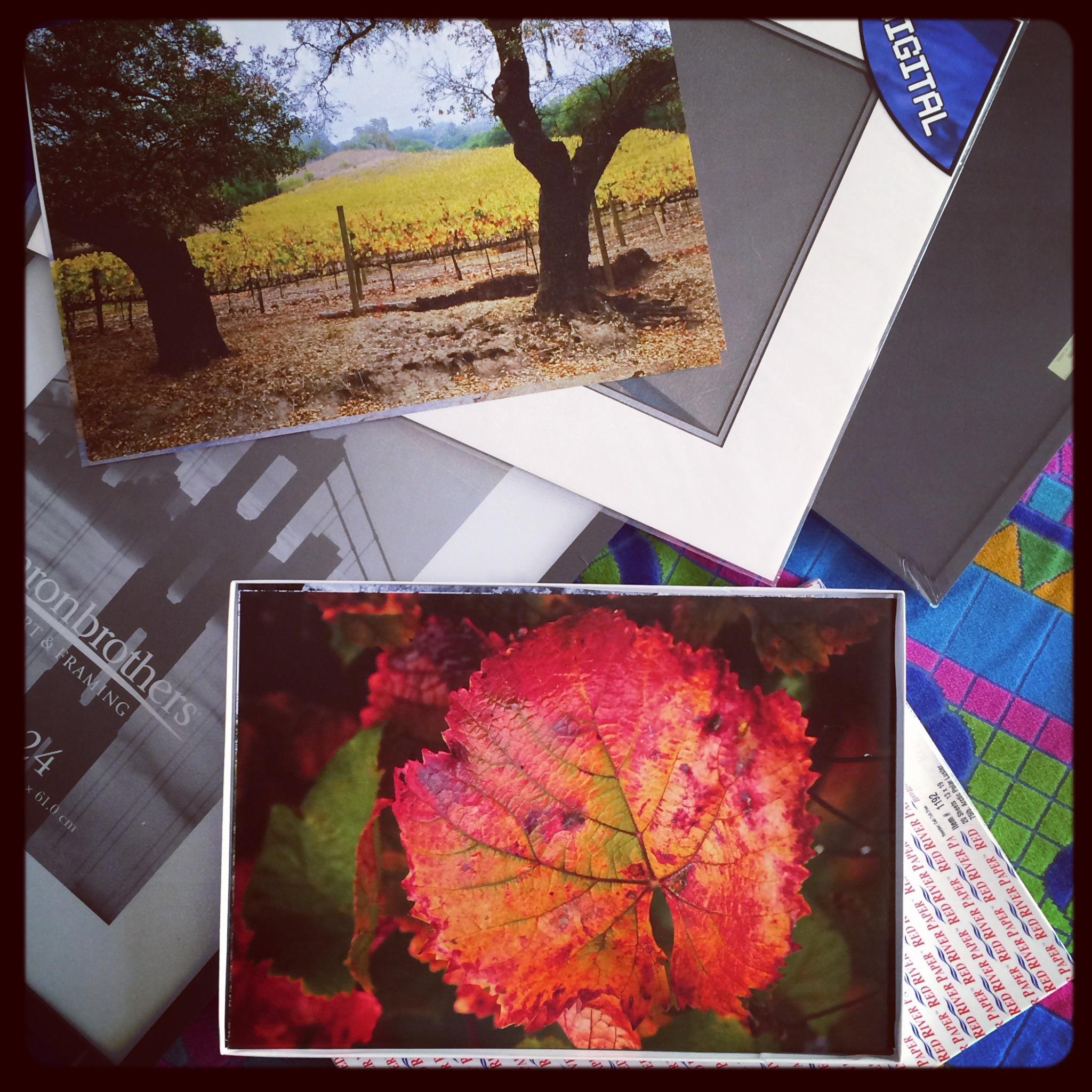 http://thedigitalstory.com/2014/01/05/d-story-framing-prints.jpg