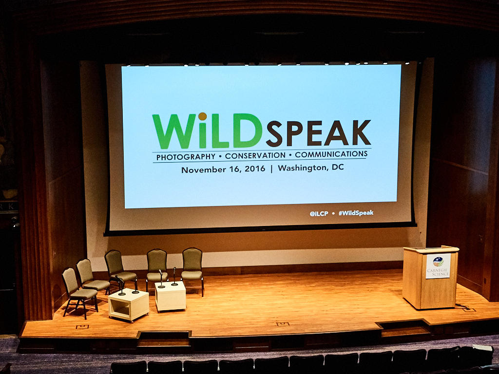 http://thedigitalstory.com/2016/11/28/PB165411-Washington-DC-Wildspeak.jpg