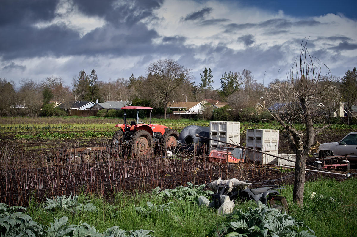 http://thedigitalstory.com/2017/03/13/IMGP0141-kp-sunday-walk-farm.jpg