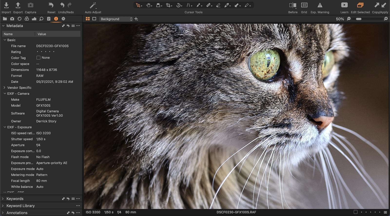 https://thedigitalstory.com/2021/06/01/cat-portrait-GFX100S-1600.jpg