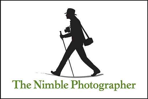 http://thedigitalstory.com/Nimble%20Logo%20with%20Space%20512px.jpg