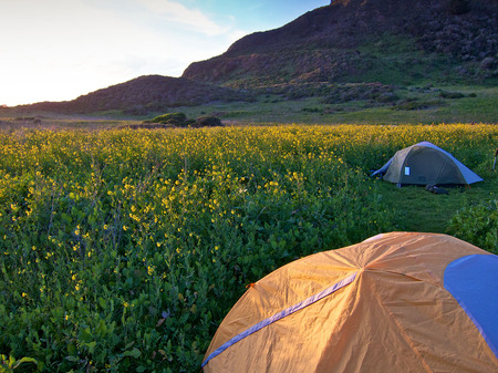 Wildcat Camp, Pt. Reyes, CA