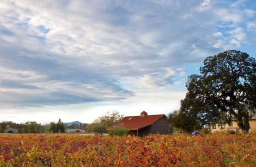 Autumn Barn, Sonoma County