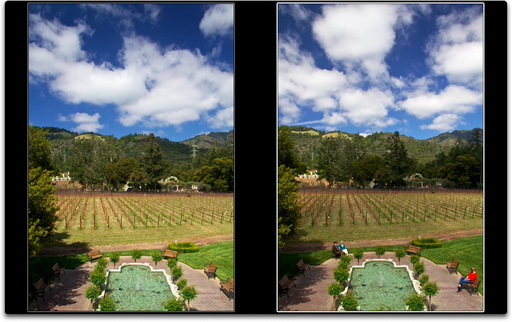 Ledson Winery, Sonoma County, CA