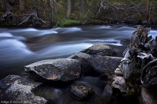 Flowing Water - Sierra