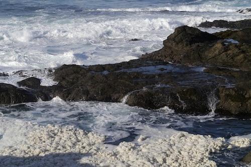 ocean_ooc.jpg