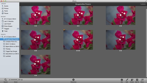 iphoto_interface.jpg