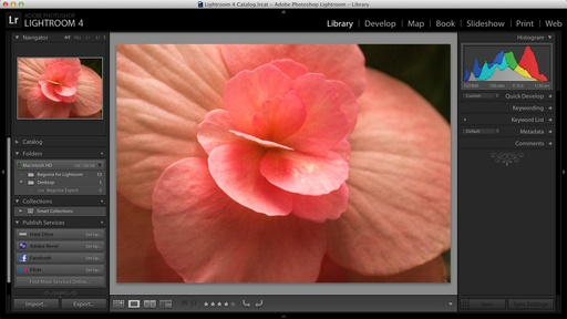 lightroom4_mbp_retina.jpg