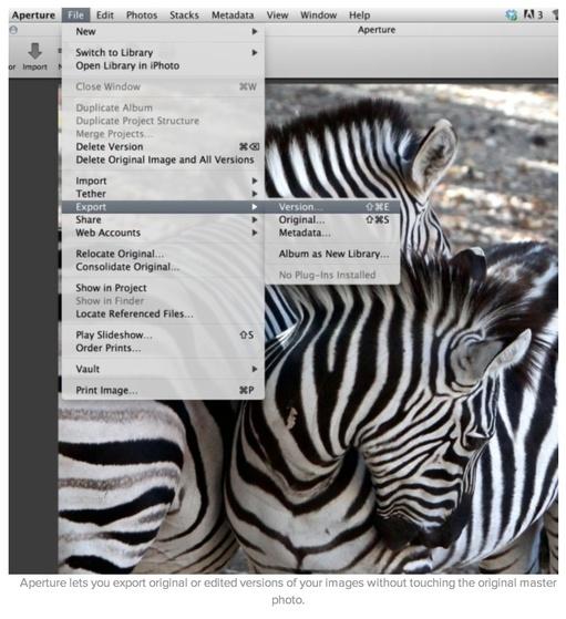 aperture_export_zebras.jpg