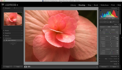 Lightroom 4.2 Develop Module