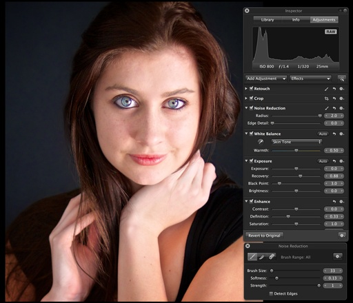 Noise Reduction for Portraits