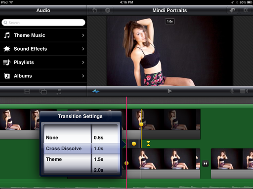 Mindi Model Posing Slideshow iMovie for iOS