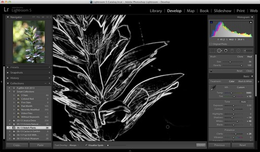 Lightroom 5 Visualize Spots