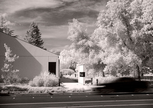 Infrared with FujiFilm X20
