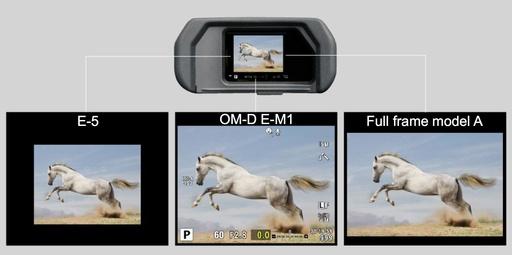 OM-D E-M1 EVF View