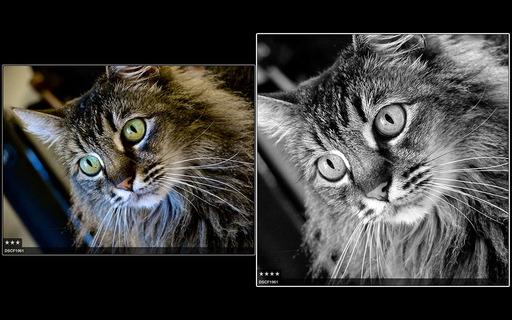00-both-versions.jpg