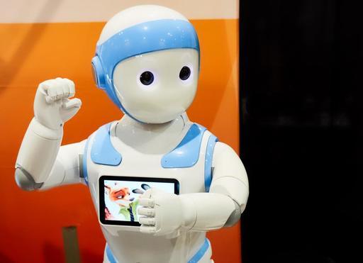 P1035834-robot-web-v2.jpeg