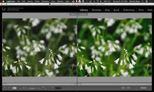 Luminar-Flex-003.jpg