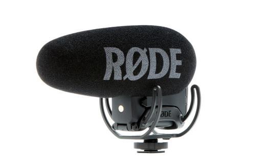 rode-shotgun.jpg