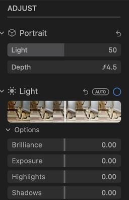 new-portrait-controls.jpg